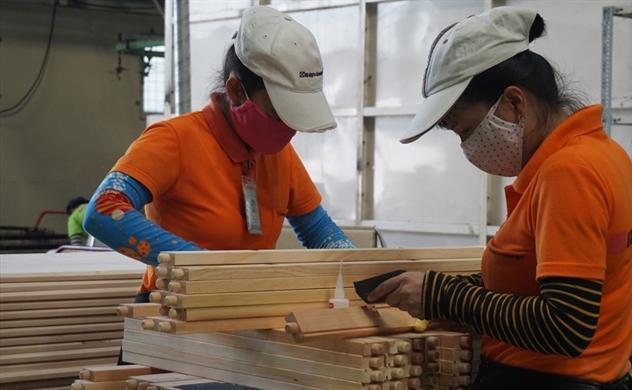 Xuất khẩu gỗ đón nhiều tín hiệu lạc quan trong năm 2019