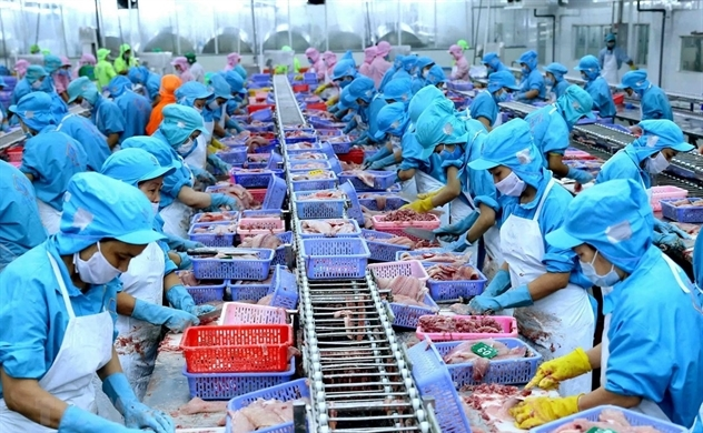 Xuất khẩu thủy sản từ Việt Nam sang Trung Quốc tăng mạnh trong tháng 7