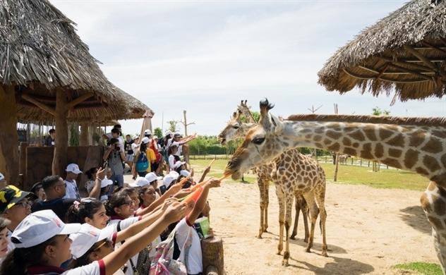 Người dân miền Trung, Tây Nam Bộ tận hưởng ưu đãi chưa từng có từ Vinpearl Land & Safari