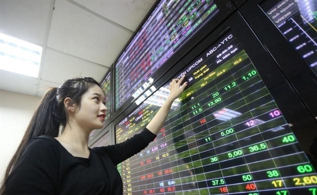 Đến thời của cổ phiếu vốn hóa vừa và nhỏ?