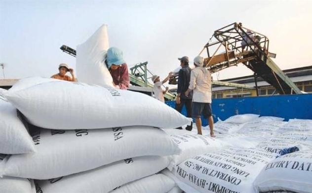 Châu Phi 'chán' gạo Thái Lan, Ấn Độ, tăng nhập khẩu gạo từ Việt Nam