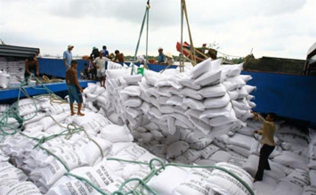 """Làm rõ nguyên nhân khiến giá gạo xuất khẩu Việt Nam """"chạm đáy"""" trong 12 năm"""