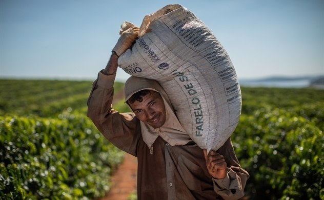 Brazil expected to oust Vietnam as world's top robusta coffee grower: Bloomberg