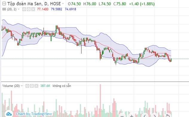Thị trường chứng khoán chiều 23/10: MSN sáng nhất VN30