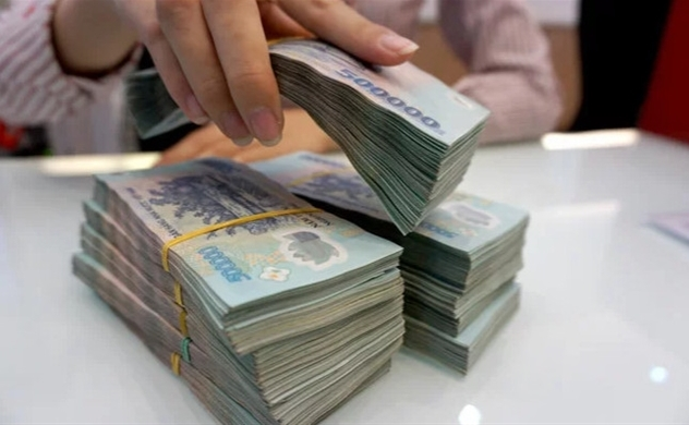 Vietnam aims at reduction in public debt ratio: VnExpress