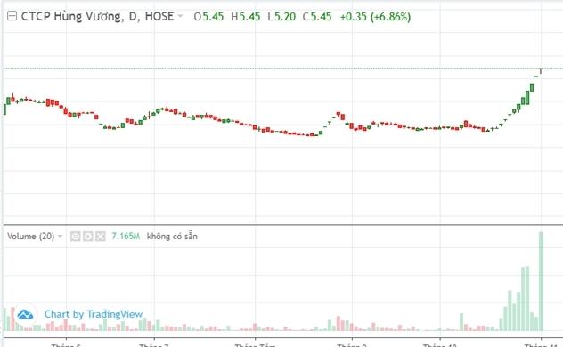 Cổ phiếu HVG của