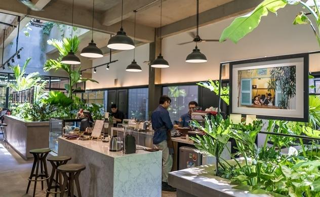 Toong Coworking Space: Cảm hứng kiến tạo từ lối sống xanh