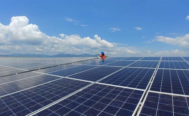 Nhiều nhà máy điện mặt trời phải giảm công suất vì quá tải lưới điện