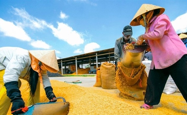 Vietnam's agriculture sector posts 11-month trade surplus of $8.8 billion