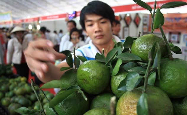 Trung Quốc đứng thứ nhất về thị trường xuất khẩu rau quả của Việt Nam