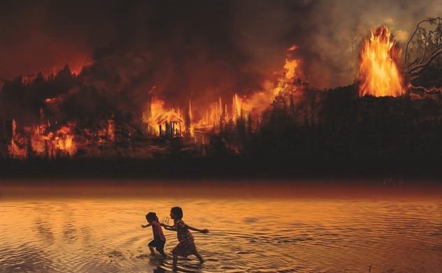 Cháy rừng do thương chiến?