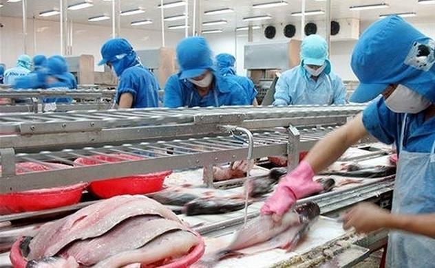 Giá trị xuất khẩu của Vĩnh Hoàn đạt 33 triệu USD trong tháng 11/2019