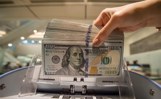 Nhờ đâu dự trữ ngoại hối Việt Nam năm 2019 đạt mức cao kỷ lục?