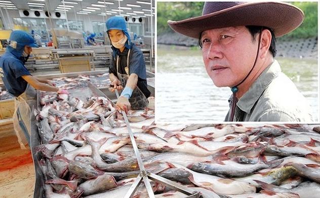 Thaco sẽ tham gia 'giải cứu' vua cá Hùng Vương?