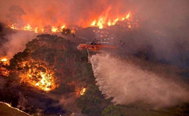 Cháy rừng ở Úc và các con số thiệt hại
