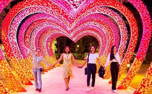 Du Xuân mãn nhãn với 1.000 gốc mai quý hiếm giữa lòng Sài Gòn