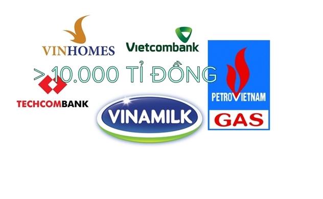 Vinhomes, Vietcombank, PV GAS, Techcombank và Vinamilk: 5 doanh nghiệp có lãi sau thuế trên 10.000 tỷ đồng