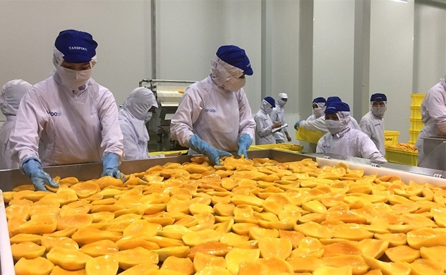 Vietnam looks to Indian market to ease virus hit to farm exports
