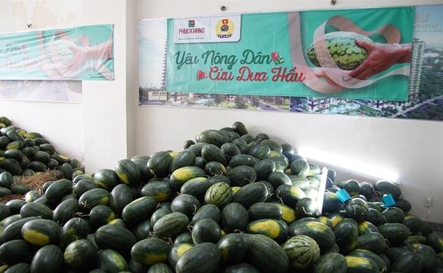 Phúc Khang hỗ trợ tiêu thụ 20 tấn dưa hấu cho nông dân tỉnh Gia Lai bên cạnh các công ty PNJ, An cường, Hưng Thịnh, Deloitte