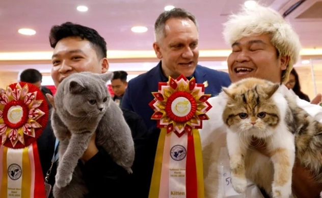 Cat show staged in Vietnam, where felines still seen as food