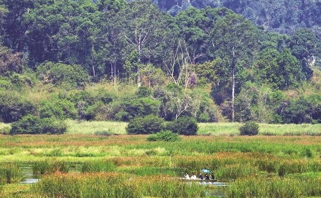 Đồng Nai mở rừng đón du lịch
