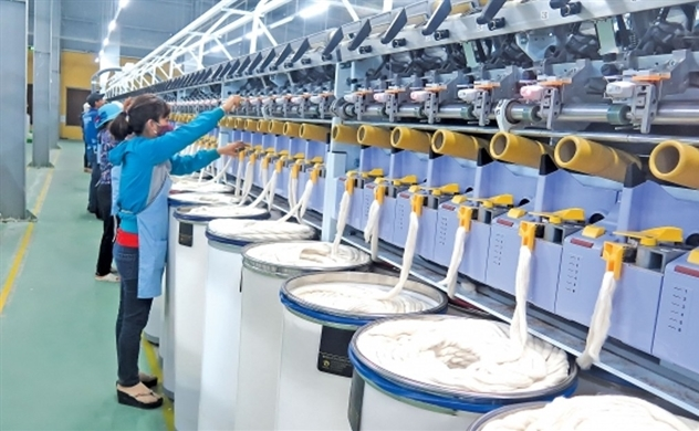 Lãi ròng vượt kế hoạch 91%, công ty dệt may chi trả cổ tức gấp 5 lần thị giá