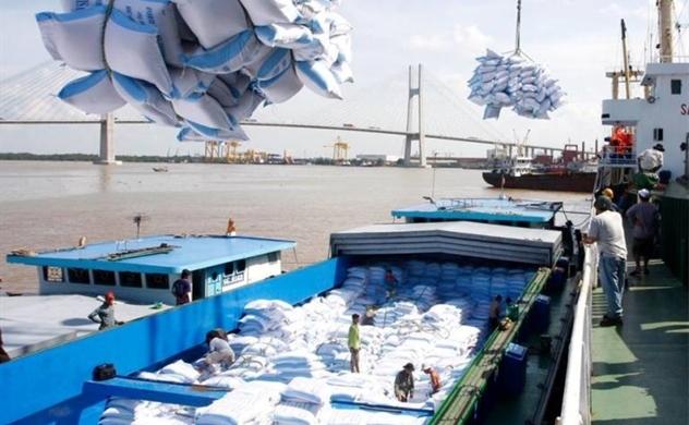 Bộ Công Thương nói gì về đề xuất tạm dừng rồi lại xin xuất khẩu gạo?