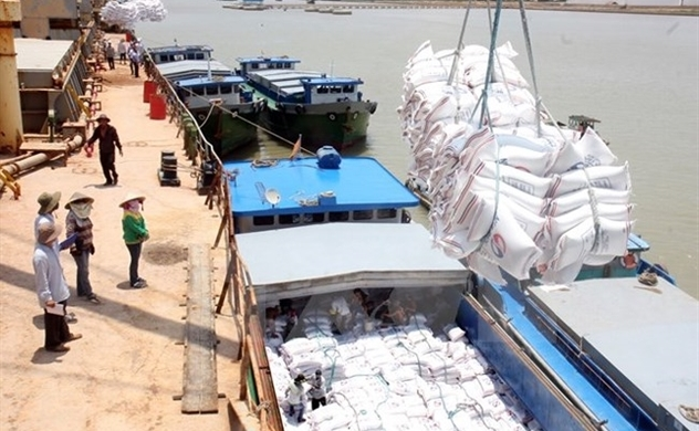 Vietnam Government holds back signing new rice export contracts