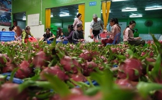 Vietnam reports a trade surplus at $2.8bln in first quarter despite public health crisis