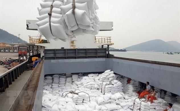 Thủ tướng Chính phủ: Xuất khẩu gạo trở lại nhưng phải đảm bảo an ninh lương thực