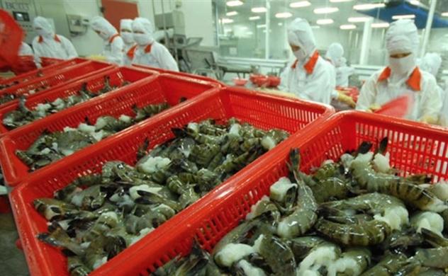 Thị trường khởi sắc, xuất khẩu thủy sản đứng trước