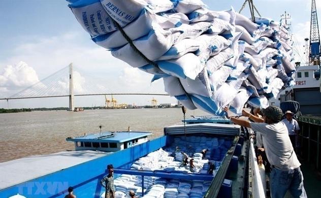 """""""Găm hàng"""" để xuất khẩu gạo giá cao"""