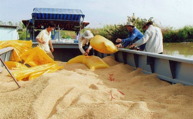 Shoppers Everywhere Hoarding Rice Cost Vietnam Its Stockpile
