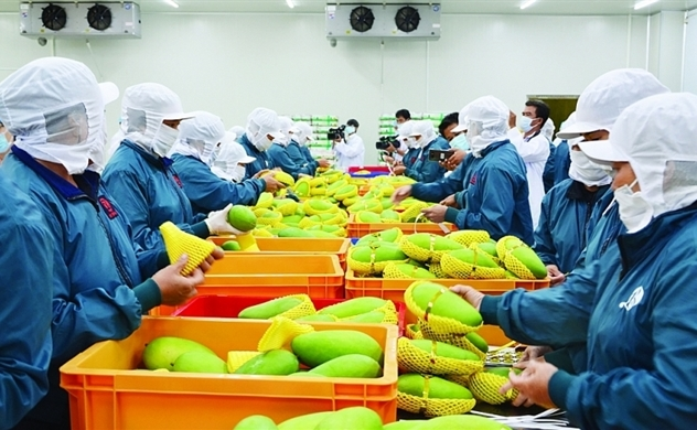 Vietnam's 4-month trade surplus seen at $3bln despite public health crisis