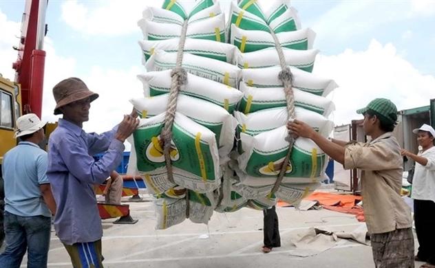 Trung Quốc đẩy mạnh mua gạo Việt Nam với giá cao