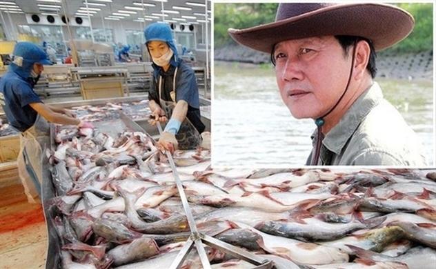 """Cổ phiếu của """"vua cá"""" Hùng Vương bị tạm ngừng giao dịch"""