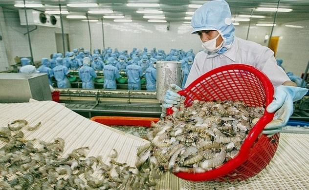 Xuất khẩu tôm vẫn tươi sáng với mục tiêu 3,8 tỉ USD