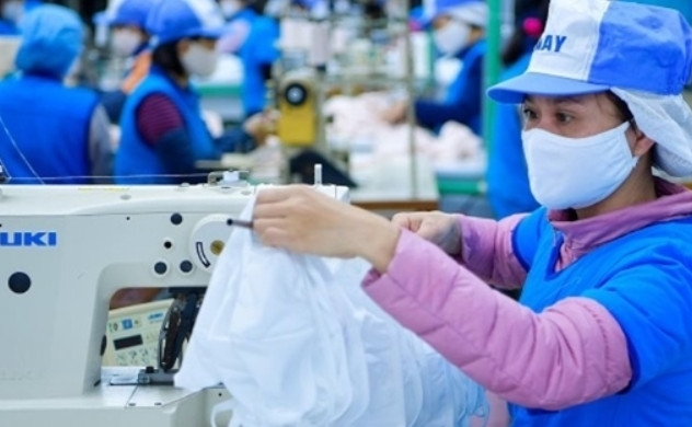 Vietnam ratifies EU trade pact, accelerating growth amid COVID-19 pandemic