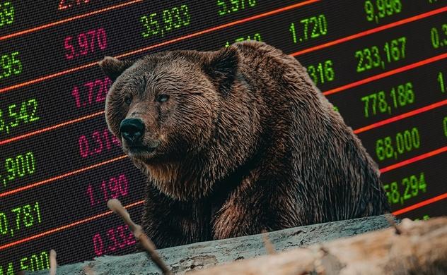 Khi thị trường chứng khoán giảm điểm, nhà đầu tư thường bỏ tiền vào đâu?
