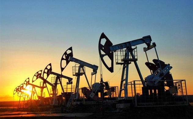 Giá dầu tăng bất chấp số ca nhiễm COVID-19 mới nhiều kỷ lục