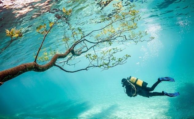 Những hình ảnh đẹp của công viên ngập trong nước vào mùa hè