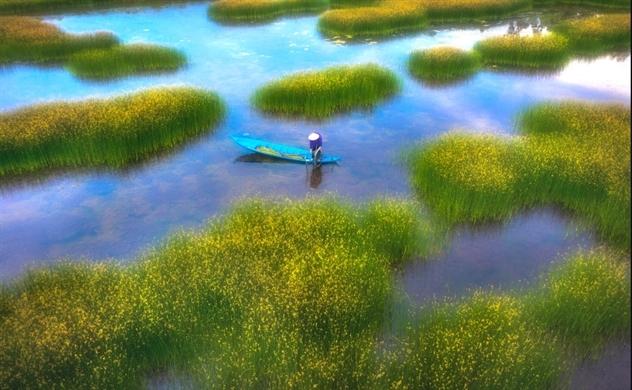 Bức họa miền quê Việt Nam