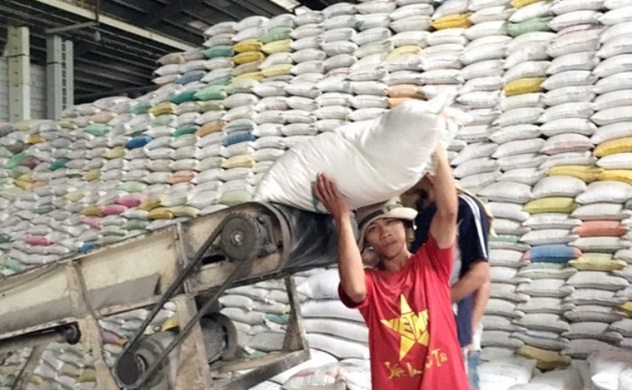 Vietnam earns $1.41bln from exporting 2.9mln tons of rice in five months