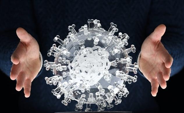 Phát hiện gây tranh cãi của Cố vấn Y tế Nhà Trắng về virus Corona