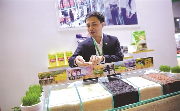 Đường tắt nâng giá hạt gạo Việt