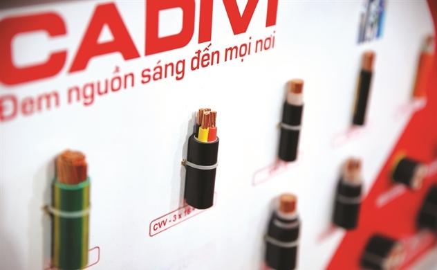 Top 50 2019: Công ty Cổ phần Dây cáp điện Việt Nam