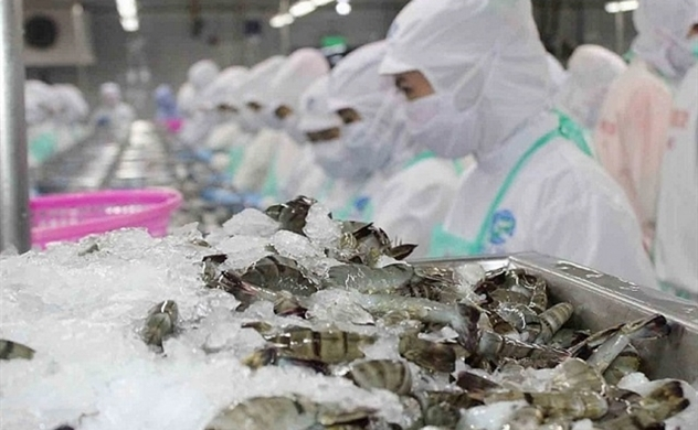 Shrimp exports to US forecast to soar 20% in 2020 on low anti-dumping tax