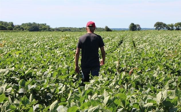 Lực lượng lao động nông thôn suy giảm, Trung Quốc phải đối mặt với sự thiếu hụt ngũ cốc trầm trọng