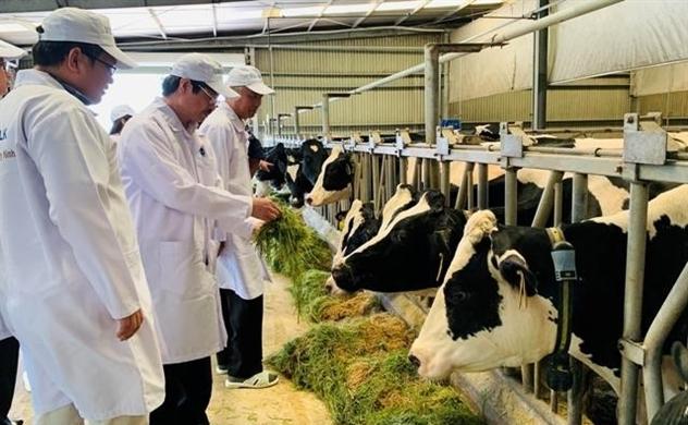 Bầu Đức chuyển ngàn tỉ đồng nợ của Chăn nuôi Gia Lai thành cổ phần