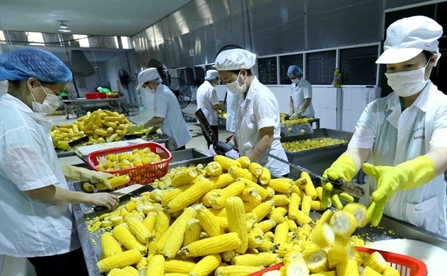 Vietnam strives to earn $40 billion in agricultural exports